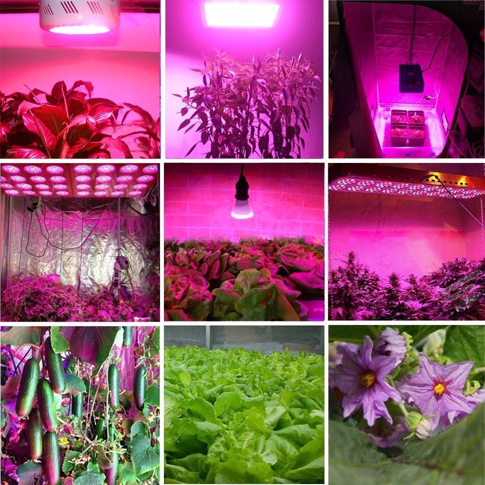 indoor greenhouse full spectrum led plant grow light 1000w led grow light hydroponic buy led. Black Bedroom Furniture Sets. Home Design Ideas