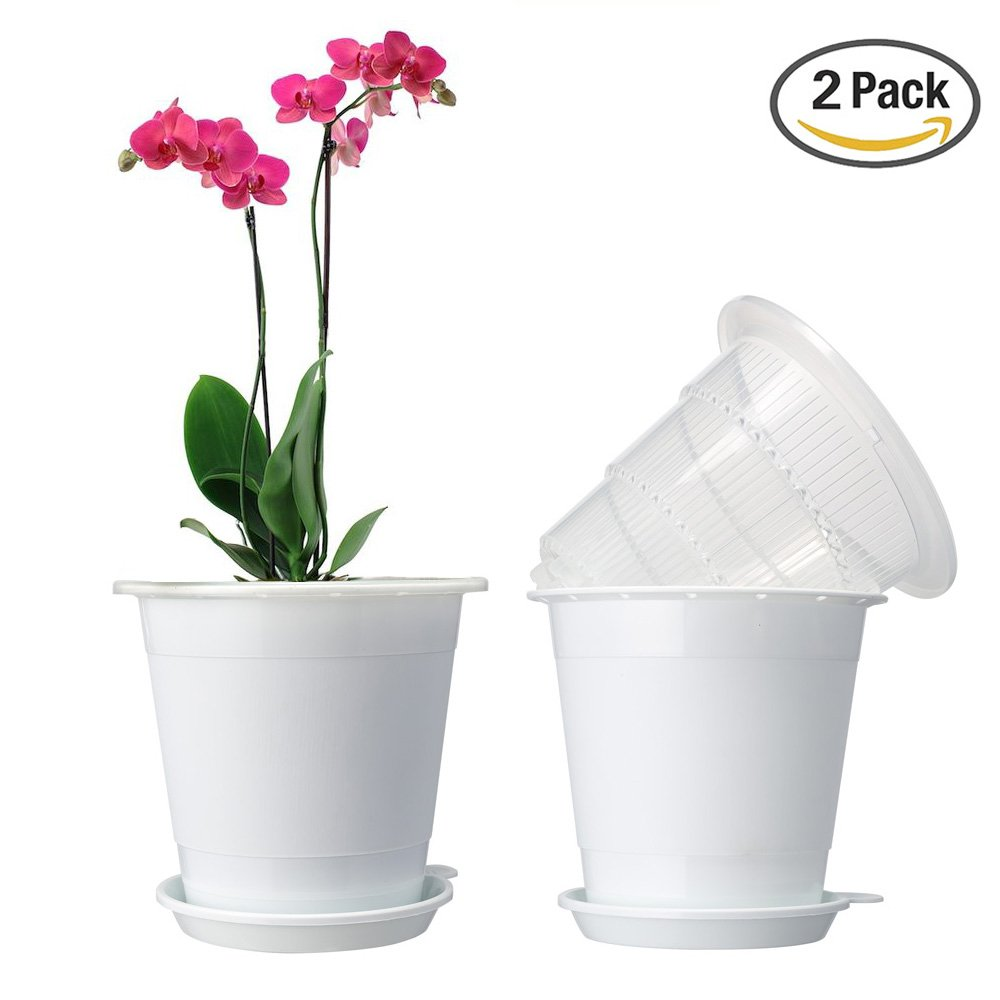 Cheap Clear Orchid Pots Find Clear Orchid Pots Deals On Line At