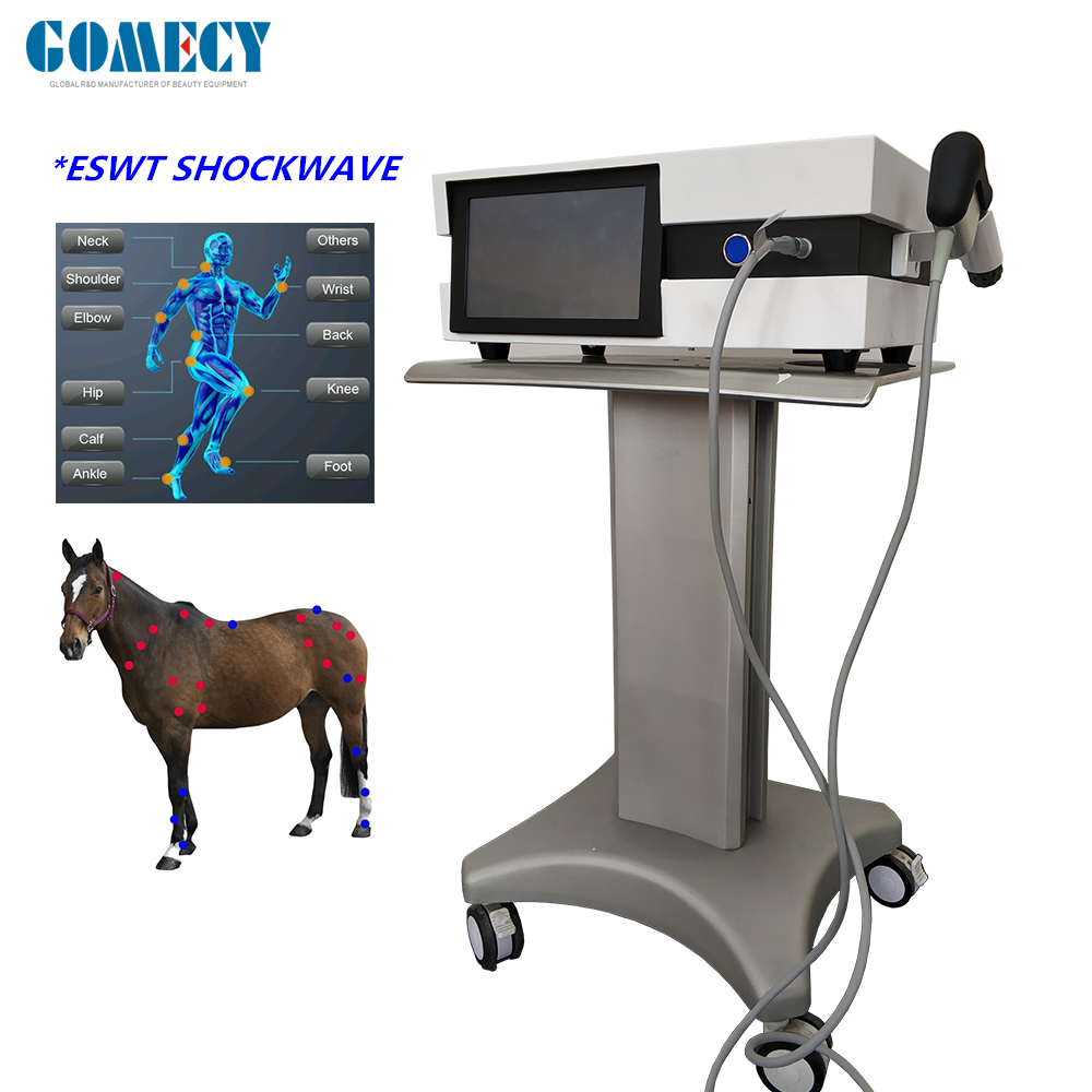 Shockwave pain reduction veterinary using for animals pain treatment clinick using.png