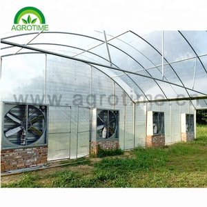 Agriculture Tropical modular reinforced 200 micron film uv treated plastic greenhouse for flower and strawberry