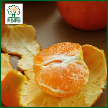 Fresh orange fruits import export and vegetables