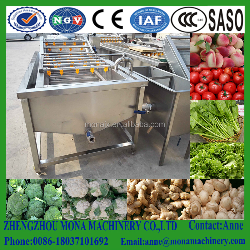 Cost of best selling bubble vegetable washing machine with factory price