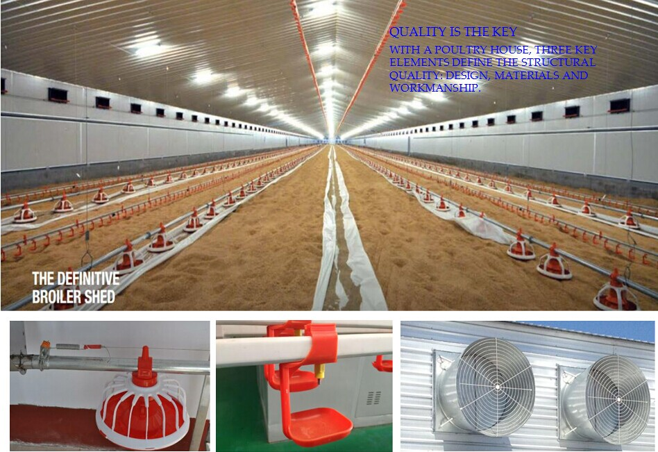 Control Low Cost Poultry Shed Farm For Broiler Layer