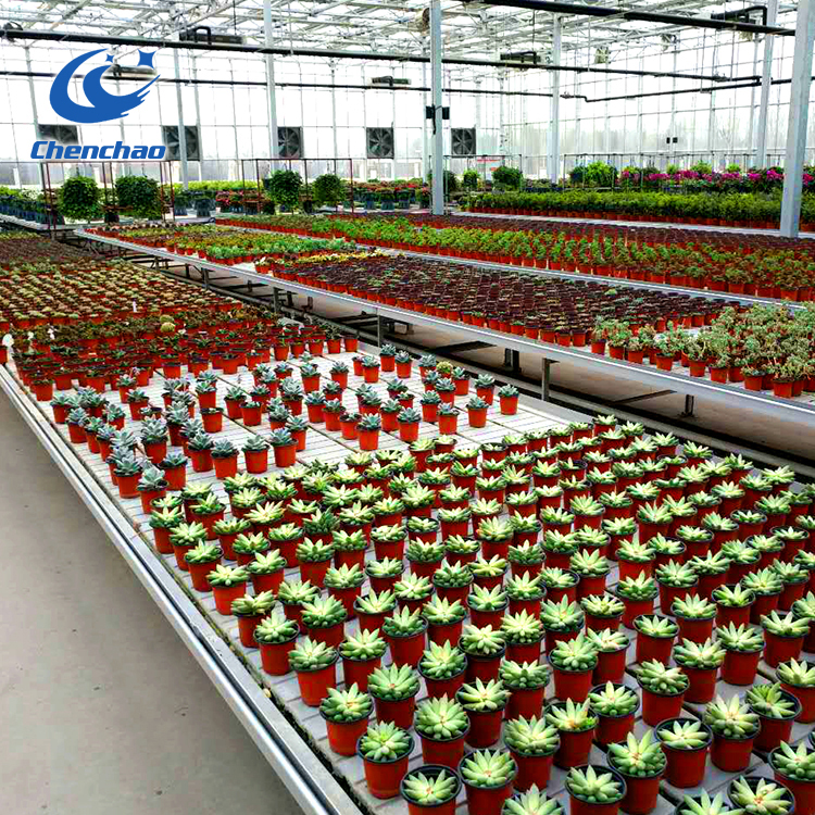 Hot Sale Greenhouse Rolling Benches Ebb and Flow Table For Commercial Agriculture