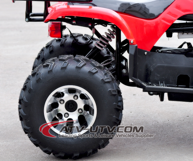 3000W ATV 4 Wheels Adult Electric Quad Bike
