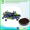 factory directly supply organic blueberry fruit powder extract Anthocyanidins