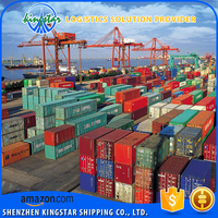 professional logistics sea shipping ocean freight from China