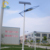 Energy saving save electricity 60W solar street lamp outdoor