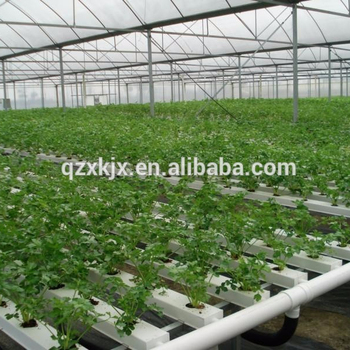 Terrific Hydroponic Greenhouse Growing System For Vegetable Buy Hydroponic Greenhouse Hydroponic Systems For Sale Hydroponic Grow System Product On Download Free Architecture Designs Ogrambritishbridgeorg