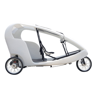 500watt Electric 3 Wheel Bike Taxi Car Pedicab Two Passenger Loading Cheap Adult Tricycle