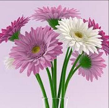 Sj Af017 Fabrika Fiyat Için Ucuz Tek Yapay Anne Papatya Yapay çiçek
