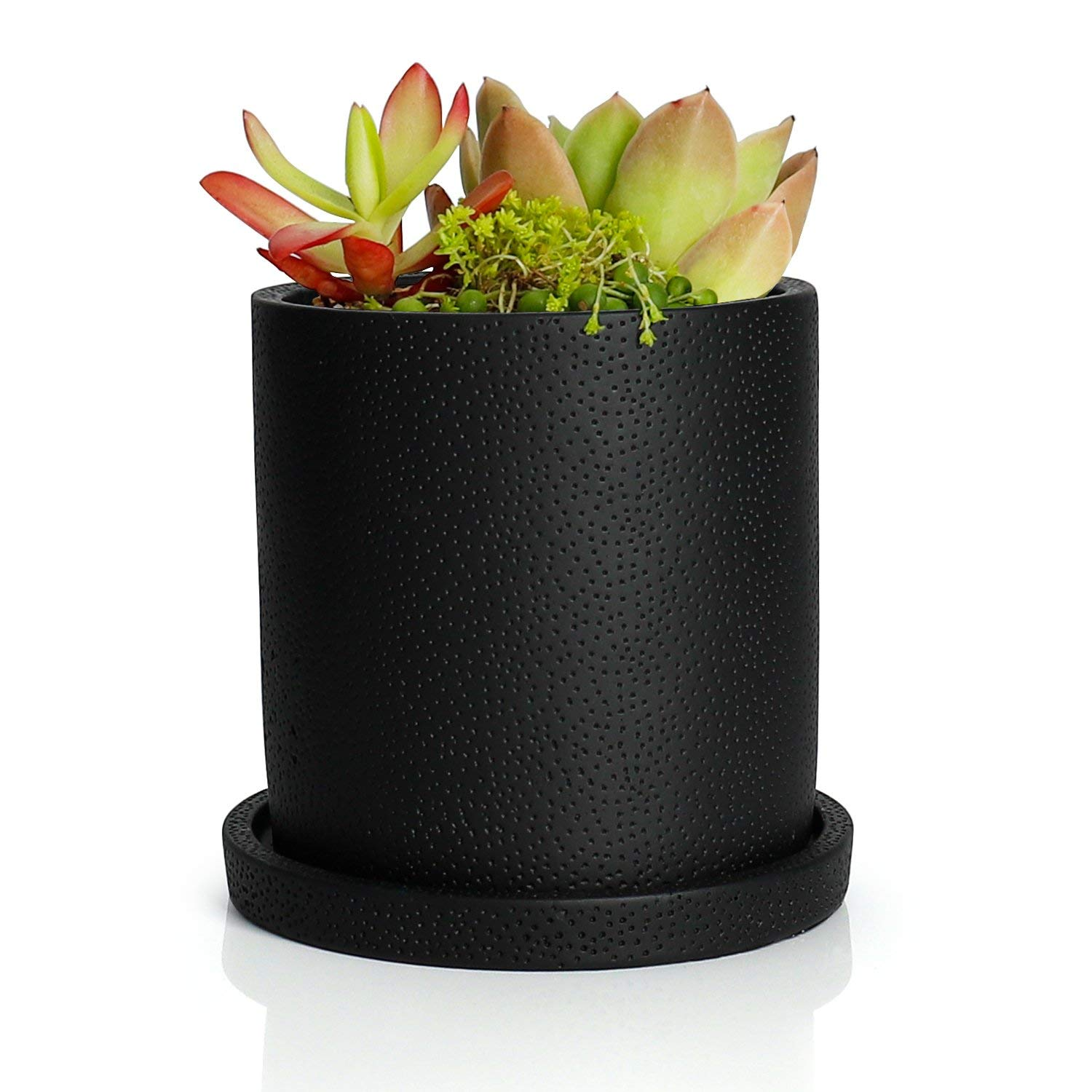 Greenaholics Succulent Plant Pots - 5.1 Inch Cement Cylinder Depth Planter with Drainage Hole and Tray, Black