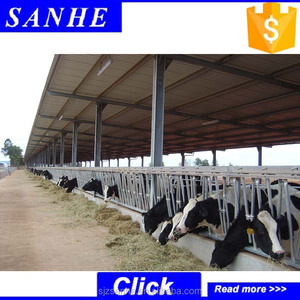 china cheap cow barn dairy shed modern poultry house with high quality