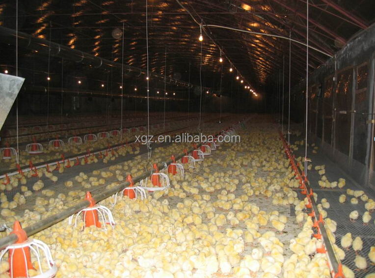 low cost prefab automatic poultry commercial house