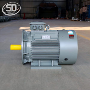 IE2 315S 6 Pole 1000rpm 100 hp 70 kw electric motor