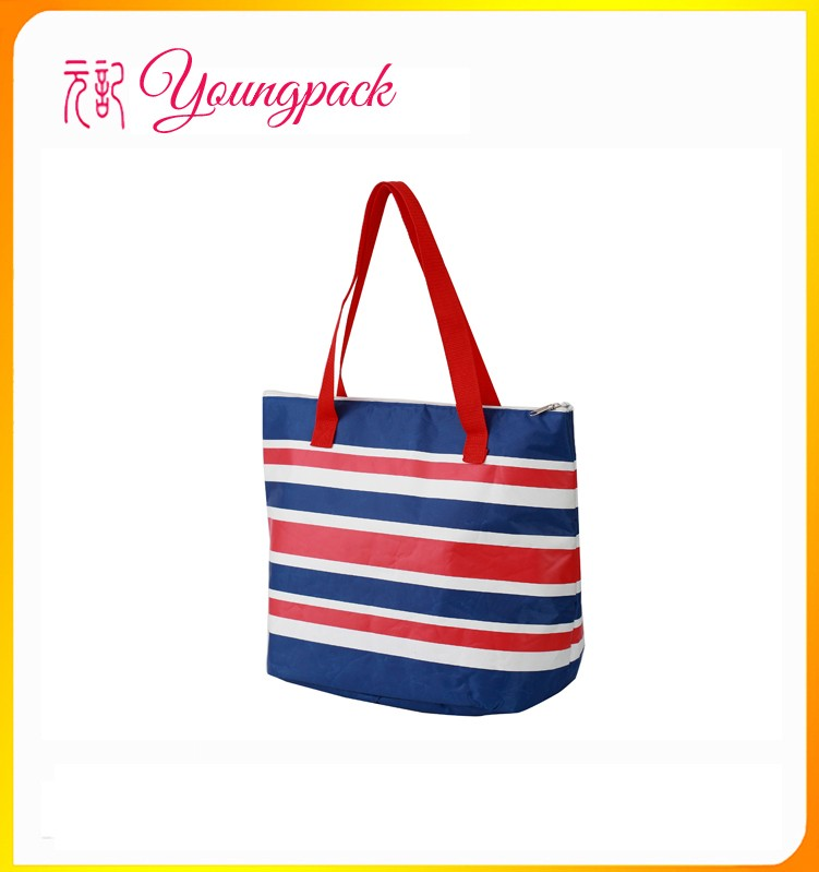 Picnic Insulated cooler beach bag