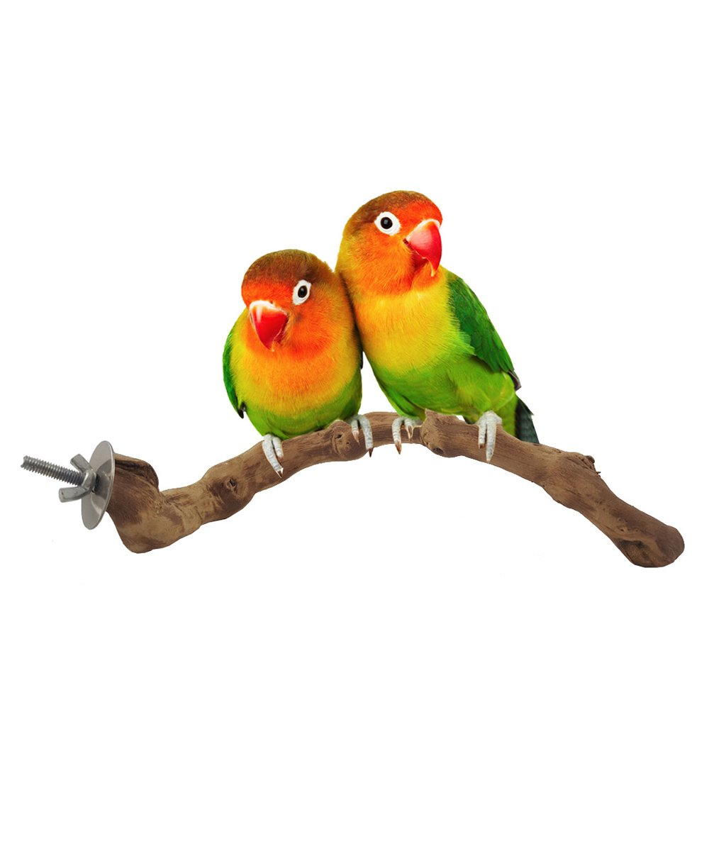 Parrot Pet Raw Wood Toy Stand Parakeet Branch Hamster Perches For Bird Cage New Drop Ship Home & Garden Bird Toys