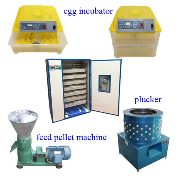 full automatic 1000 eggs incubator hatcher equipment for sale
