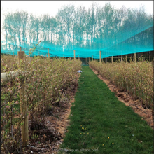 Top level professional merchandise garden bird netting