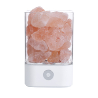 3D Custom Shape USB Rechargeable Bedroom Small Baby Cute Led Touch Lamp Decor Himalayan Salt Night Light for Baby Room
