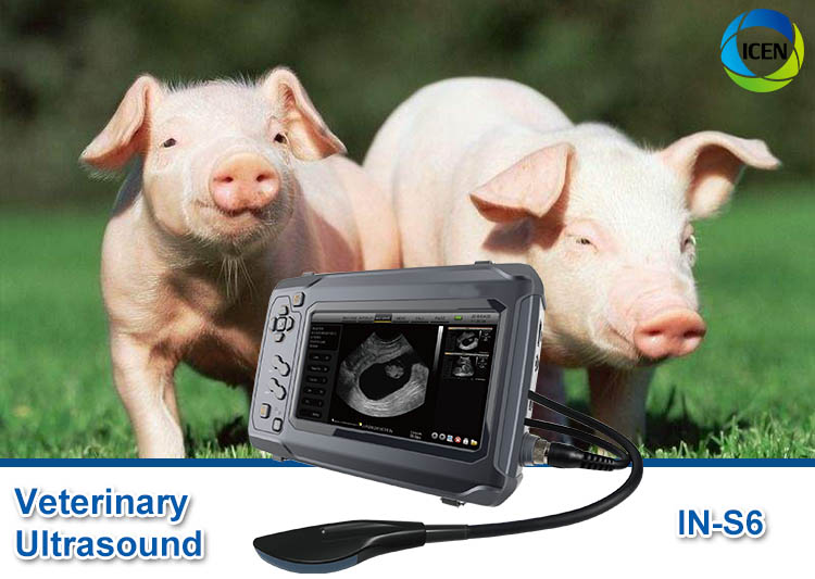 IN-S6 Portable Ultrasound Machine Veterinary Mindray Veterinary Ultrasound Scanner Price