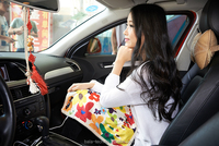 vehicle heating blanket for home and vehicle