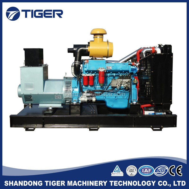 250kva diesel PMG good price high quality magnetic generator