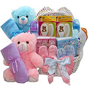 Art of Appreciation Gift Baskets Double The Fun New Baby Gift Basket, Twin Girl and Boy by Art of Appreciation Gift Baskets