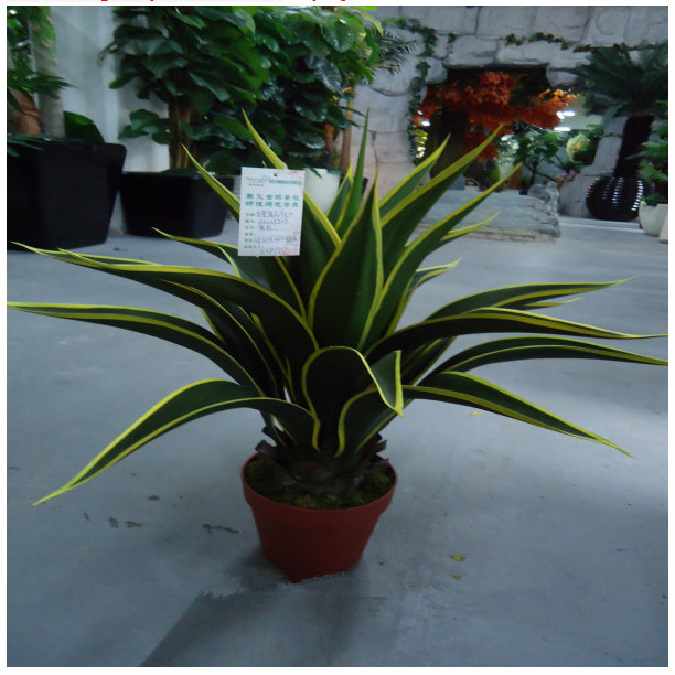Indoor Plants Plastic Small Artificial Plant Agave Bonsai