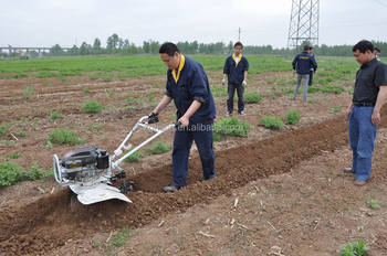 Farm Equipment Sweet Potato Digger China Agricultural Machinery ...