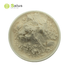 Best Price Organic Psyllium Seed husk powder