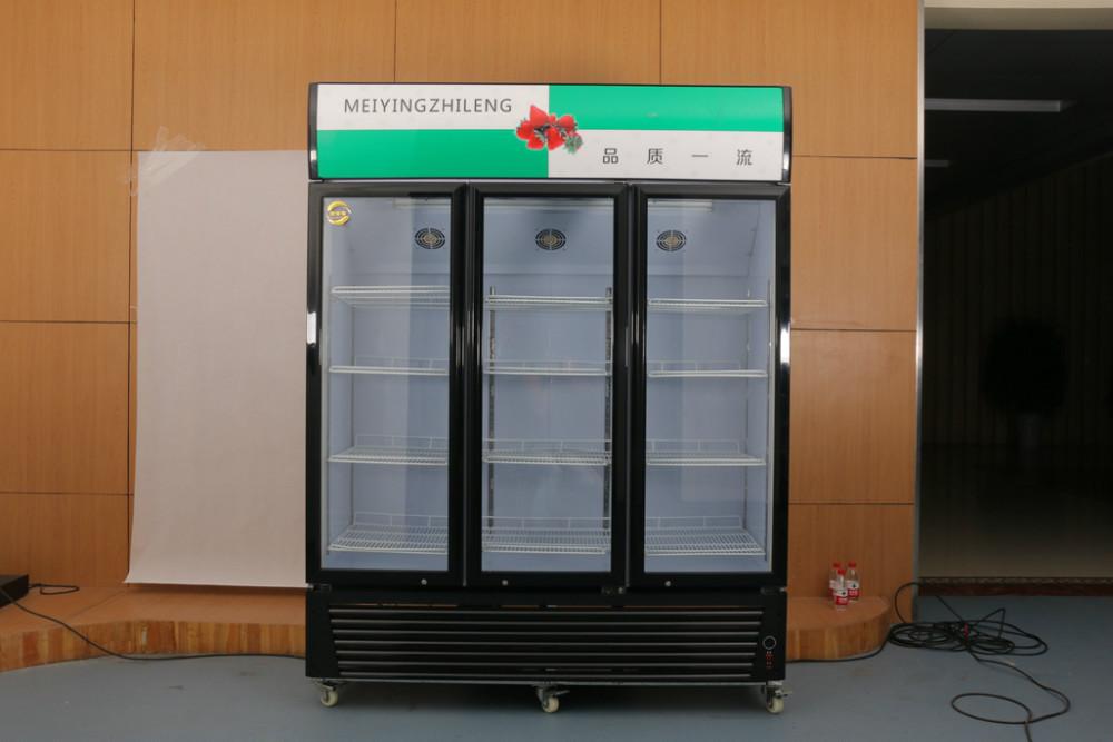 Double Door Drinks Fridge Unique Display Showcaseair Cooled Double Door  Refrigerator For . Inspiration Design