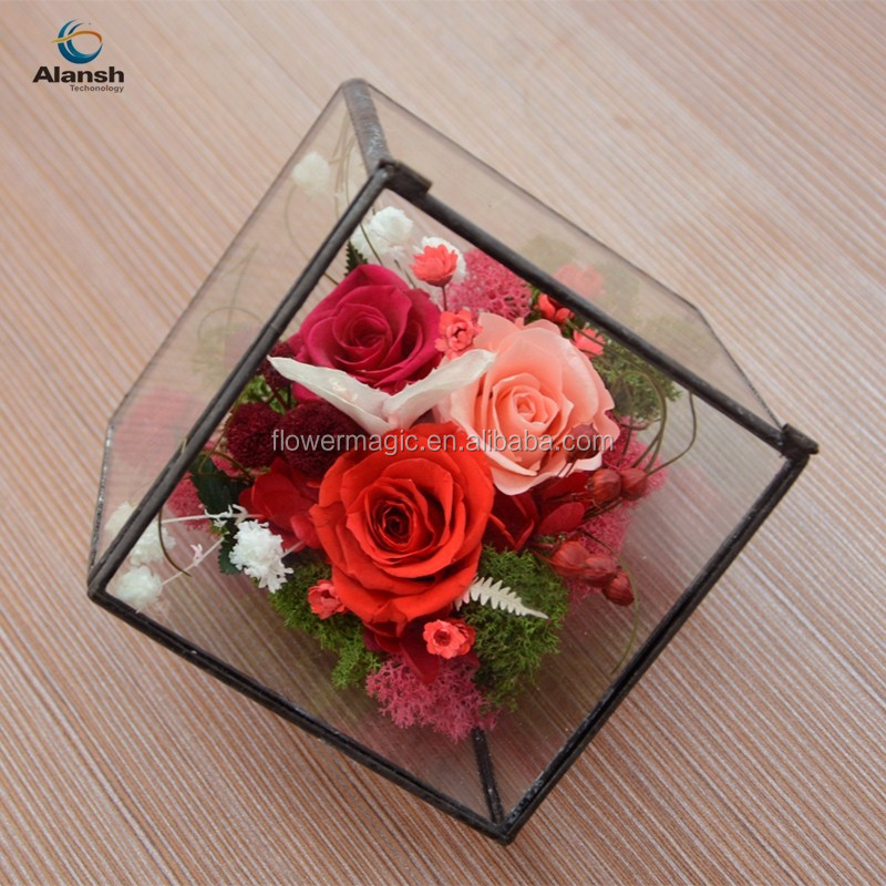 Hot sale Preserved Flower in glass square box decoration gifts red/pink rose moss long time lasting flower