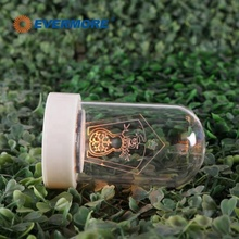 Evermore Small Battery Operated Light up Bottle Grow Light Kit