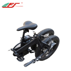 250 watt 36v light weight motor smart sunny ebike with 20 inch fat tire