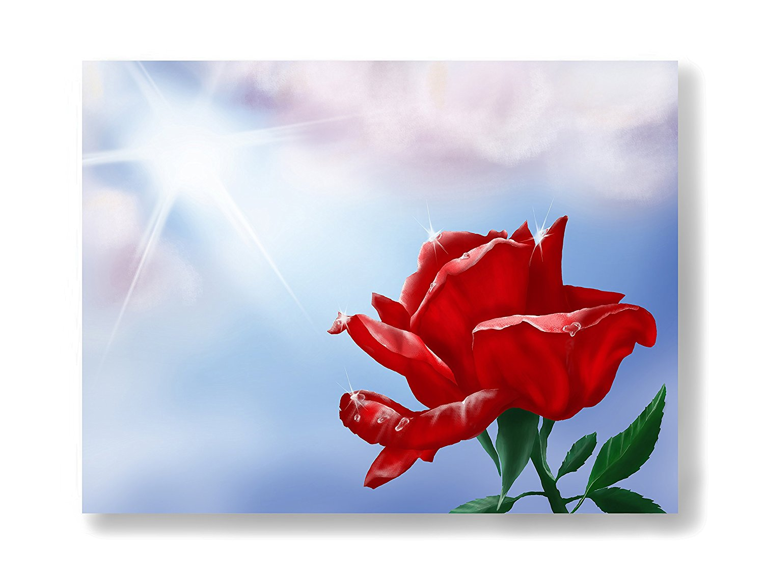 Buy Sparkling Red Rose 10 Blank Artist Notegreeting Cards