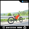 fat tire electric bike special carbon frame off road bike with battery