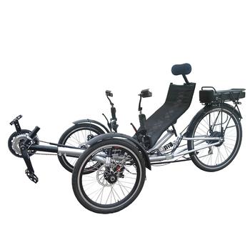 tricycle Adult recumbent