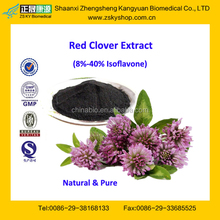 GMP Certified Factory Supply Free Sample Red Clover Extract