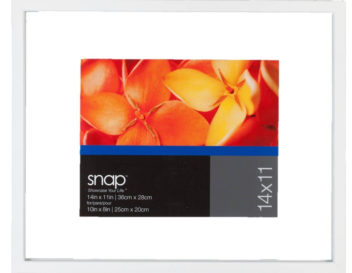 Get Quotations Snap 12x12 Float Frame For Floating Display Of 8x8 Image White