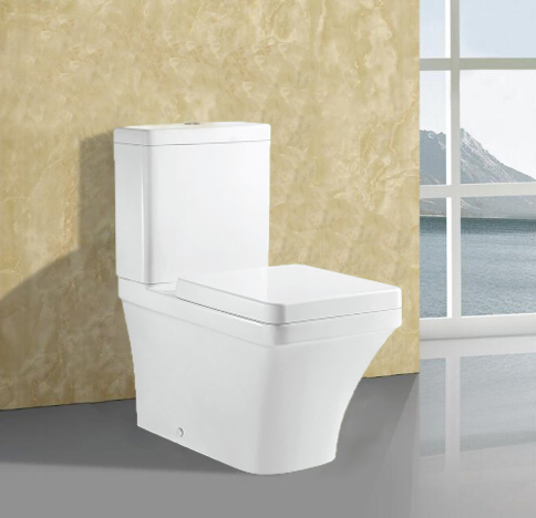 Two-Piece Bathroom Design Ceramic WC Toilet