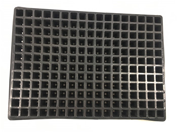 New product black plastic agriculture greenhouse 204 cells seedling tray, seedling bean sprouts tray for sale