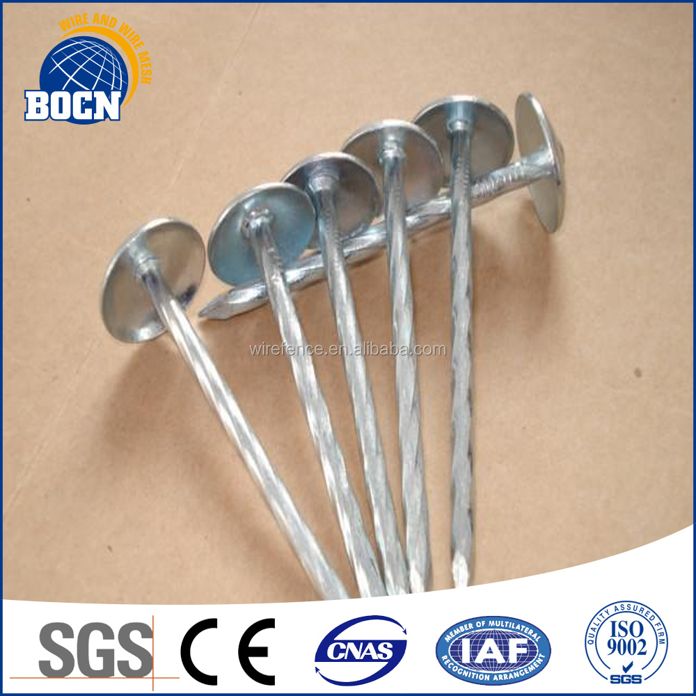 cheap price galvanized iron nails for roofing