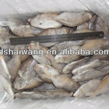 Frozen butterfish in fresh seafood (POMPANO) 80-100g