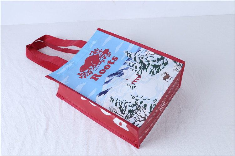 Factory Supplier various colours non woven bag shopping