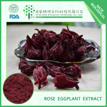 High quality Roselle calyx Extract /Rose eggplant extract/ ruselle extract for Promoting blood cell destruction