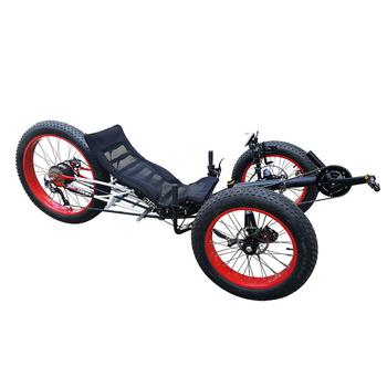 Aluminum Alloy Frame Sand and Snow Trike 500W E-Assist Full Fat Tyre ...