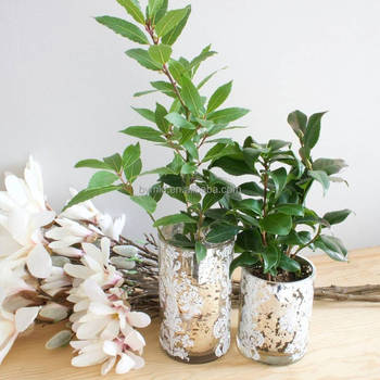 Wholesale Mirrored Glass Vases Buy Wholesale Mirrored Glass Vases
