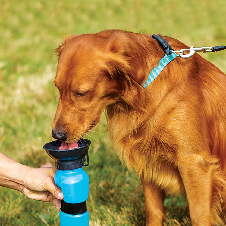 2017 As Seen On TV Aqua Dog Outdoor Portable Auto Pet Drinking Mug Plastic Dog Water Bottle for Travel