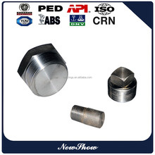 China manufacturer stainless steel threaded NPT 316 HEX PIPE PLUG